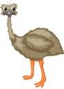 Cartoon emu Royalty Free Stock Photo