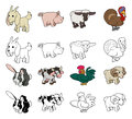 Cartoon farm animal illustrations a set of color and black an white outline versions Royalty Free Stock Image