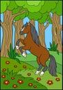 Cartoon farm animals. Beautiful horse. Royalty Free Stock Photo