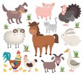 Cartoon farm animals. Turkey cat ram goat chicken rabbit horse. Village animal collection