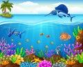 Cartoon fish under the sea