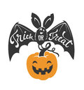 Cartoon flying bat with spread wings and Trick or Treat text written on it holding Halloween pumpkin lantern isolated on