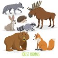 Cartoon forest animals set. Wolf, hedgehog, moose, hare, raccoon, bear and fox. Funny comic creature collection.