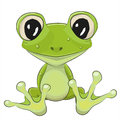 Cartoon Frog Royalty Free Stock Photo
