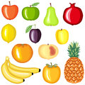 Cartoon fruit set colorful image Stock Image
