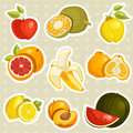 Cartoon fruits stickers Royalty Free Stock Photography