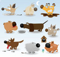 Cartoon funny dogs set Stock Image