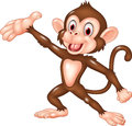 Cartoon funny monkey presenting isolated on white background