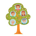 Cartoon generation family tree in flat style grandparents parents and child on white background.