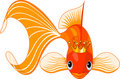 Cartoon Goldfish queen Stock Photography