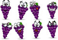 Cartoon grapes with emotions ,vector Stock Photo