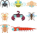 Cartoon graphic insects and arthropod include cockroach fly spider ant scorpion mosquito termite centipede Royalty Free Stock Images