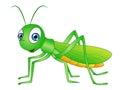 Cartoon Grasshopper Clip Art Royalty Free Stock Photo