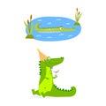Cartoon green crocodile funny predator australian wildlife river reptile alligator flat vector illustration.