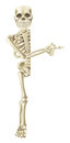 Cartoon halloween skeleton pointing a character peeping round a banner or sign and at its contents Stock Image
