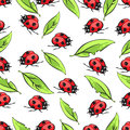 Cartoon hand drawing beetle ladybug and leaves seamless pattern, vector background. Funny insects on a white backdrop