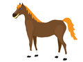 Cartoon Horse Stands Royalty Free Stock Photo
