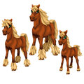 Cartoon horses on white background. Vector