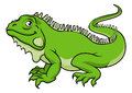 Cartoon Iguana Lizard Royalty Free Stock Photo