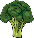Broccoli vegetable cartoon illustration Royalty Free Stock Photo