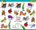 One of a kind game with insect characters Royalty Free Stock Photo