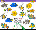 Find two the same pictures activity game