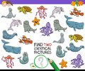 Find two identical sea animals game for kids Royalty Free Stock Photo