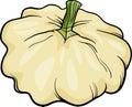 Patison Vegetable Cartoon Illu...
