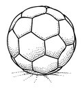 Cartoon image of Soccer ball Icon. Football symbol