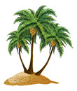 Cartoon island with palms small and three palm trees over white background Royalty Free Stock Photography