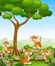 Cartoon leopard group in the jungle