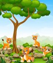 Cartoon lioness group in the jungle