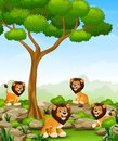 Cartoon lions group in the jungle