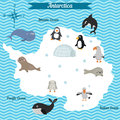 Cartoon map of Antarctica continent with different animals.