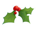 Cartoon mistletoe shinny decorative ornament red and green Stock Image