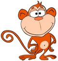Cartoon monkey Royalty Free Stock Photos
