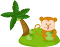 Cartoon monkey with coconut illustration of isolated Stock Image