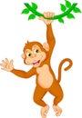 Cartoon monkey hanging in tree Royalty Free Stock Photo