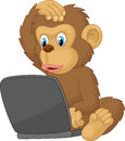 Cartoon monkey operating laptop Royalty Free Stock Photo