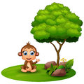 Cartoon monkey sitting under a tree on a white background Royalty Free Stock Photo
