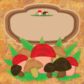 Cartoon Mushroom Label Card_eps Stock Image