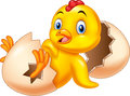 Cartoon new born chick