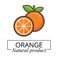 Cartoon orange label vector Royalty Free Stock Photo
