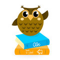 Cartoon Owl with books isolated on white.