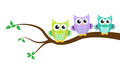 Cartoon owl on a tree vector illustration Stock Images