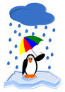 Cartoon penguin funny with an umbrella Royalty Free Stock Image