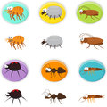 Cartoon pests cute icon set of eps Stock Photos