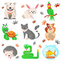 Cartoon pets colorful collection with their footprints on white