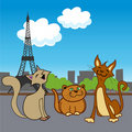 Cartoon pets in paris Stock Photos