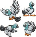 Cartoon pigeon in different poses
